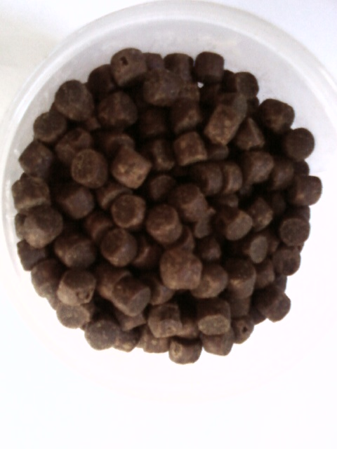 pellet special carpe esturgeon silure